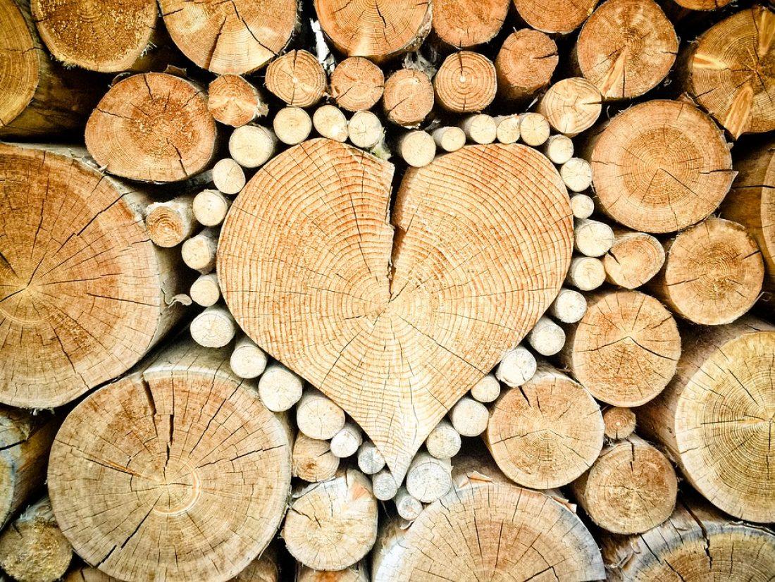 Se chauffer au bois : il n'y a pas mieux ?