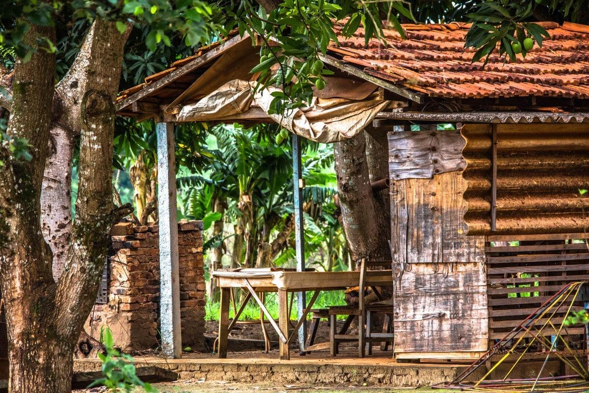 Abri de jardin ou chalet en bois conseils - Amenager son jardin en ligne ...
